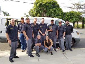 Our Amazing Team